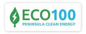 ECO100_logo-button (003)