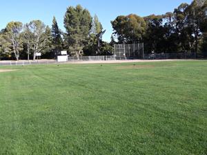 McDougal Park