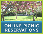 Buttons Template- Picnic Reservations