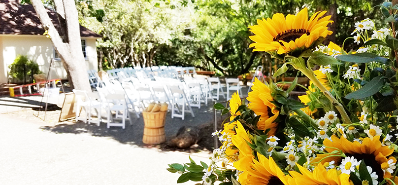 Sunflower wedding Lodge patio banner